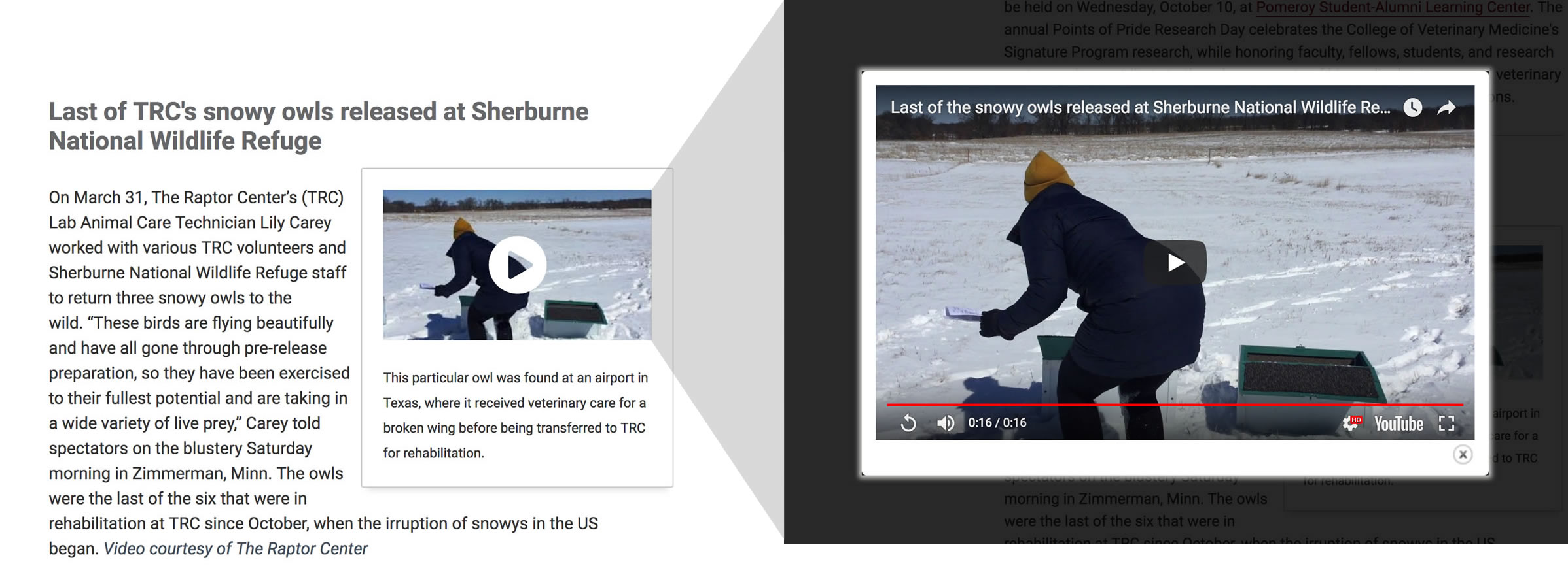 Screenshot of video linked to modal window